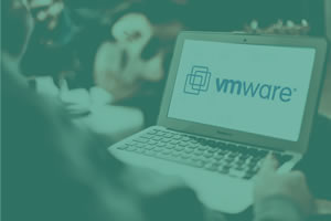 vmware-fw-setting