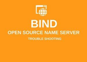"bind ゾーンファイル ""already in use"" エラーの対応方法"